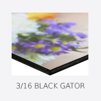 3/16 Black Gator