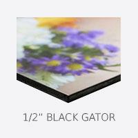 1/2 Black Gator